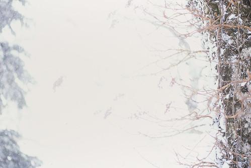 20121227004hachimantai.jpg
