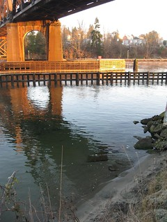 2012_01_16_0815am_CommodoreParkSeattle_St2