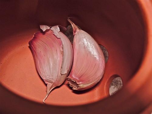 Garlic in Terracotta by Irene.B.