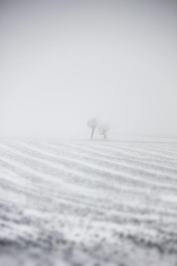 Vinterdag-1