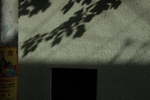 light and shade 24