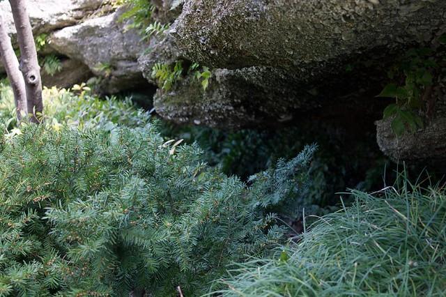Smugglers' Grotto