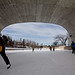 Skating on the Canal Rideau ✵ Patiner sur le Canal Rideau
