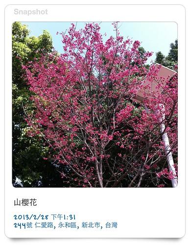 20130228。仁愛公園