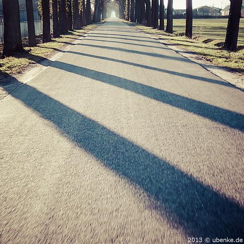 _sun_&_stripes