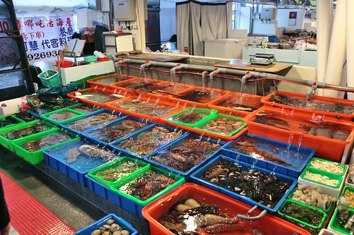 E for Fish stores in utah
