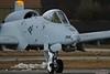 USAF A-10 SP AF81 988