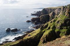 St. Abb's Head Cliffs