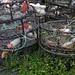 Getting Crab Pots ready for Dungeness Crab fishing around Petersburg Alaska by Pilgrim Traveler