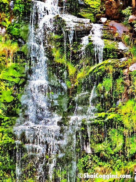 Day 5/365 (2013): Erskine Falls, Lorne, Victoria, Australia