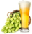hops-and-beer