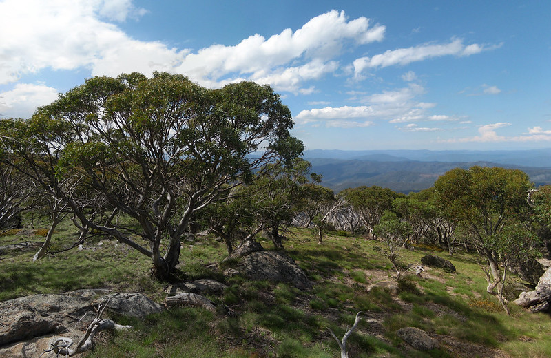 Views from the granite boulders near the summit - Mount Wills - Alpine National Park - Victoria - Australi