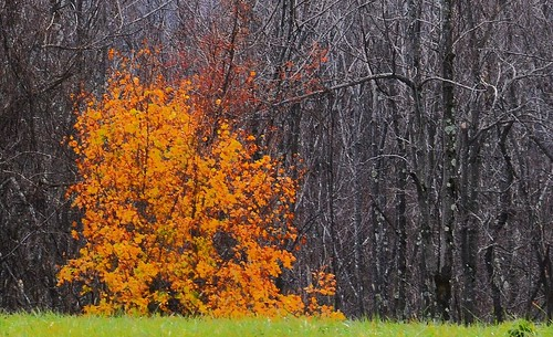 autumn usa connecticut litchfield johnjmurphyiii 06759 topsmeadestate