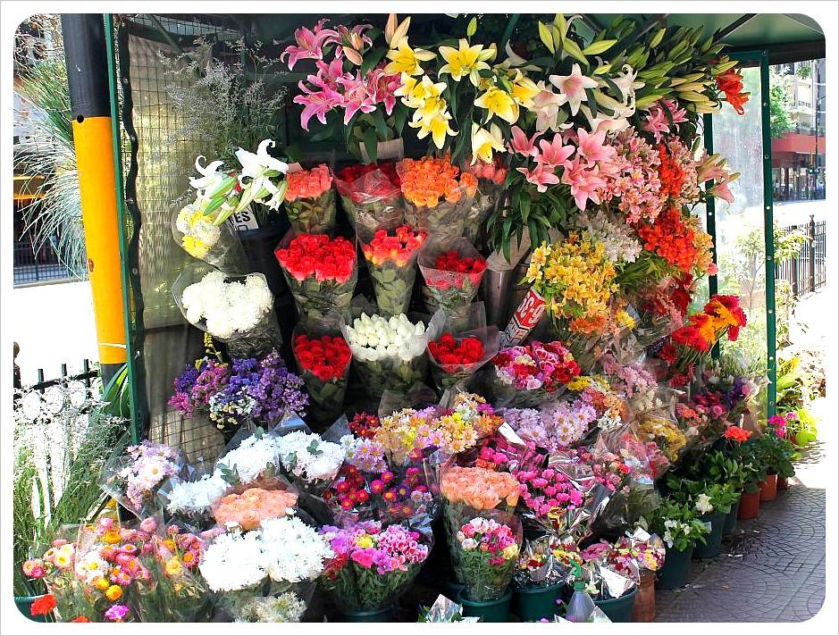 flower vendor in buenos aires