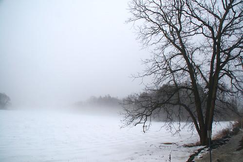 winter mist nature fog landscape sony roosevelt valley hydepark hudson alpha dslr eleanor eastpark valkill
