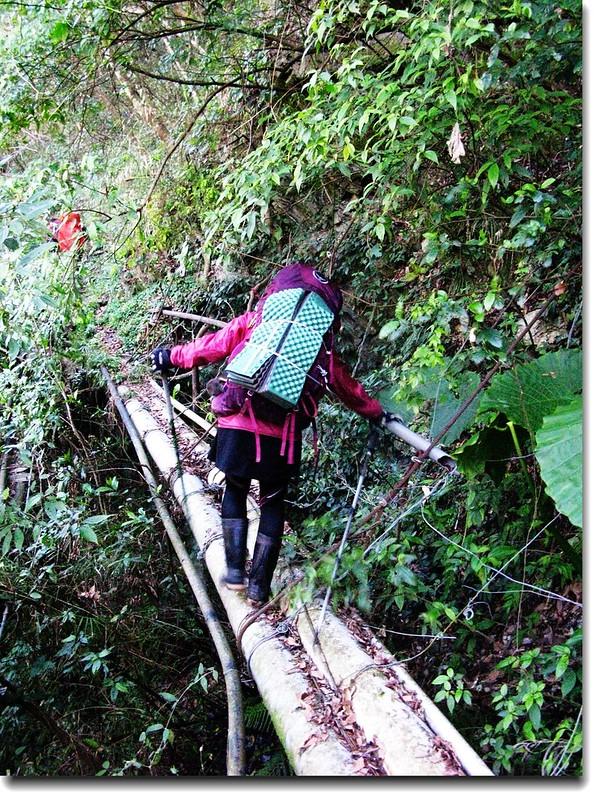 小水圳步道大塑膠管跨橋