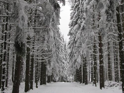 une journee a la neige aux donon 048