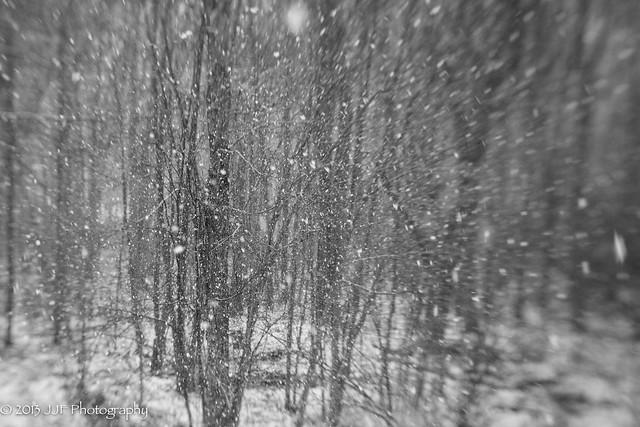 2013_Jan_28_Lens Baby Snow_013