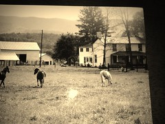 Old family farm
