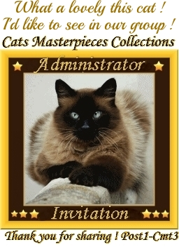 Cats Masterpieces Invite Award