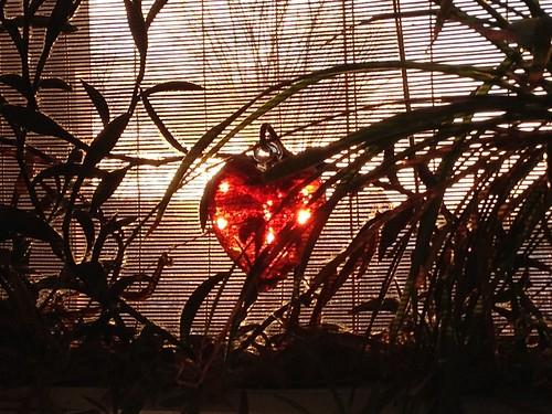 sun sunshine sunrise heart valentine 2013 uploaded:by=flickrmobile flickriosapp:filter=nofilter
