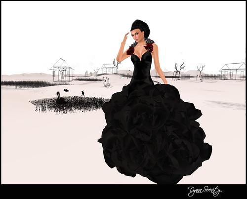 Raven by Dyana Serenity