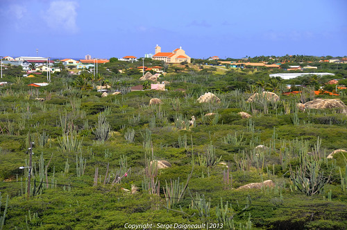 "Oranjestad from the book ""Le isole lontane"" by Sergio Albeggiani"