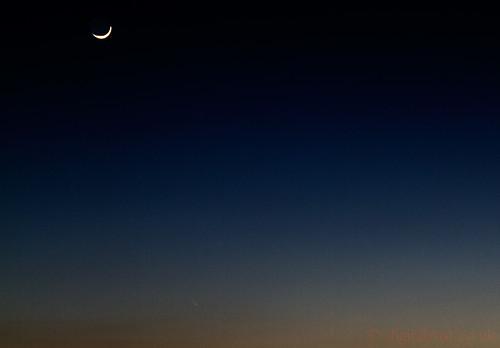 Comet Panstarrs  13.03.2013