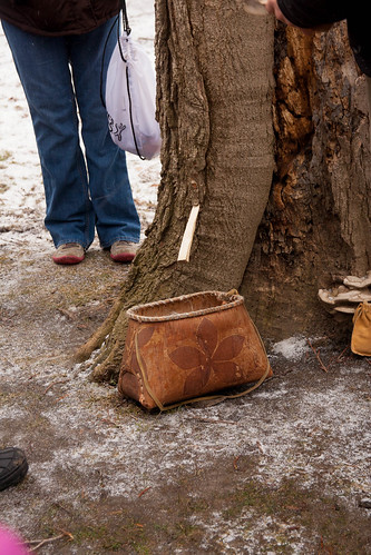 maple sugaring (2)