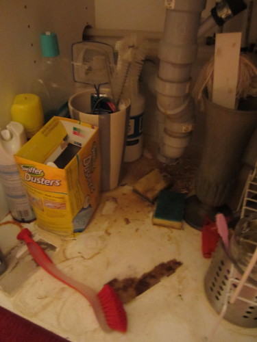 fixing the kitchen's plumbing