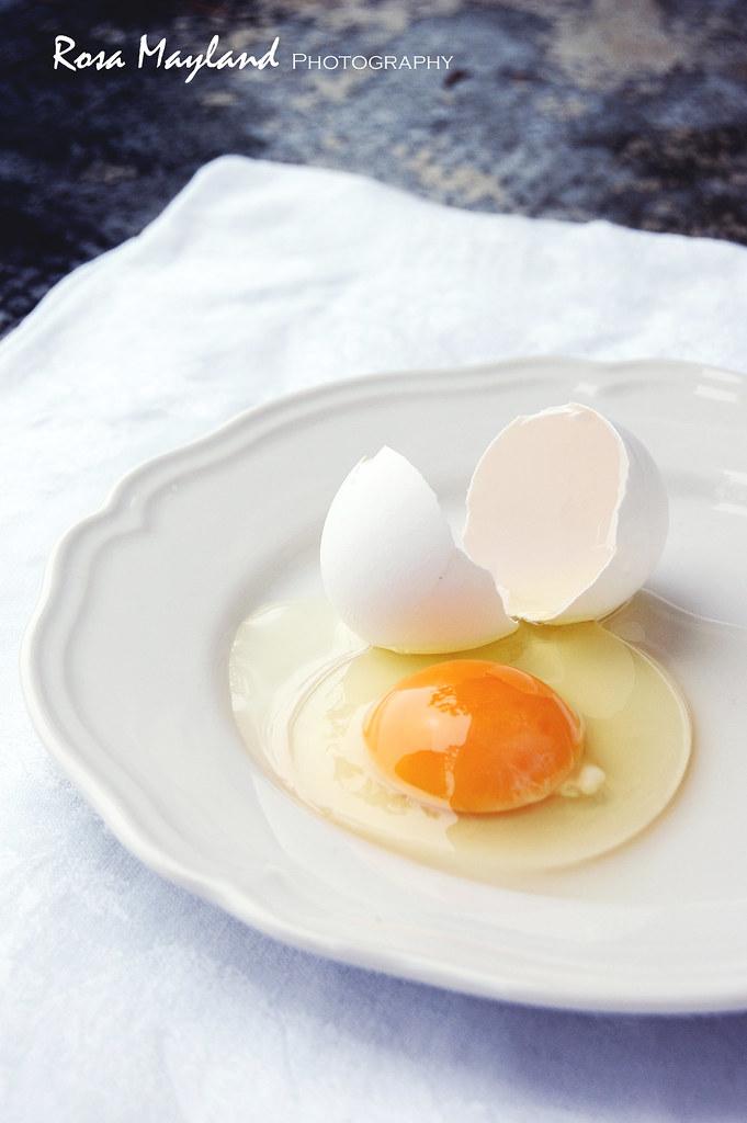 Egg 2 11 bis