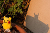 Shacknews Photo Assignments #199: Shadows