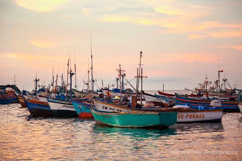 ocean sunset seascape bird beach peru landscape boat dock sundown harbour scenic ica paracas anchored provinceofpisco