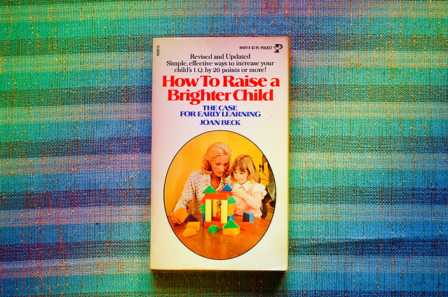 How To Raise A Brighter Child 29php