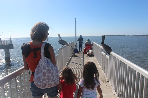 Day 167: Another day in Cedar Key.