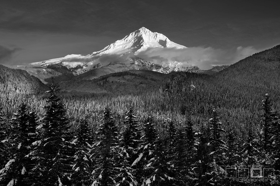 Winters Blanket - Mt Hood National Forest, Oregon