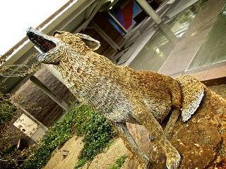1.26 - Iron Coyote