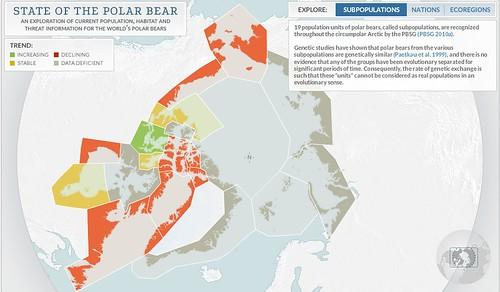 bearpopulations