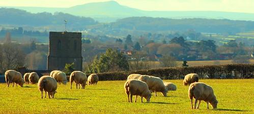 Lugwardine and the Black Mountains #dailyshoot #Herefordshire