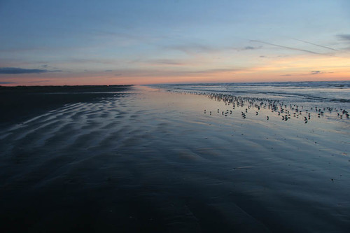 Sunset at Ocean Shores