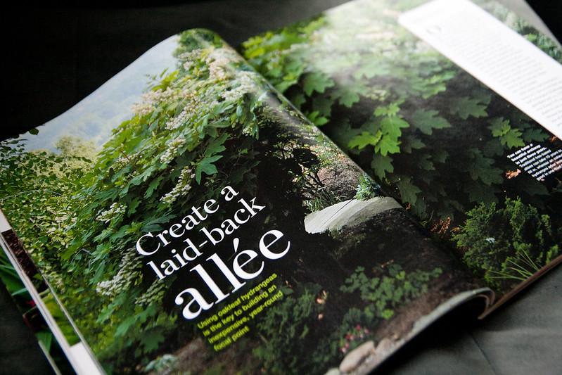 fine gardening - allee