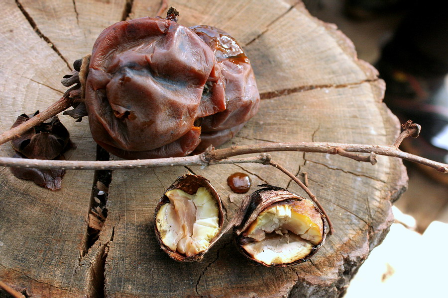 persimons and chestnuts