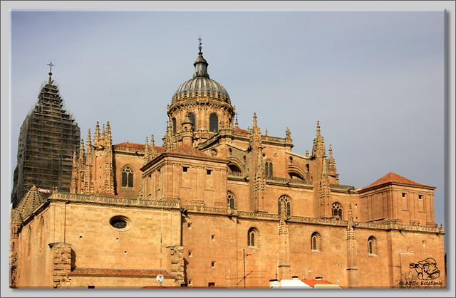 7 Salamanca