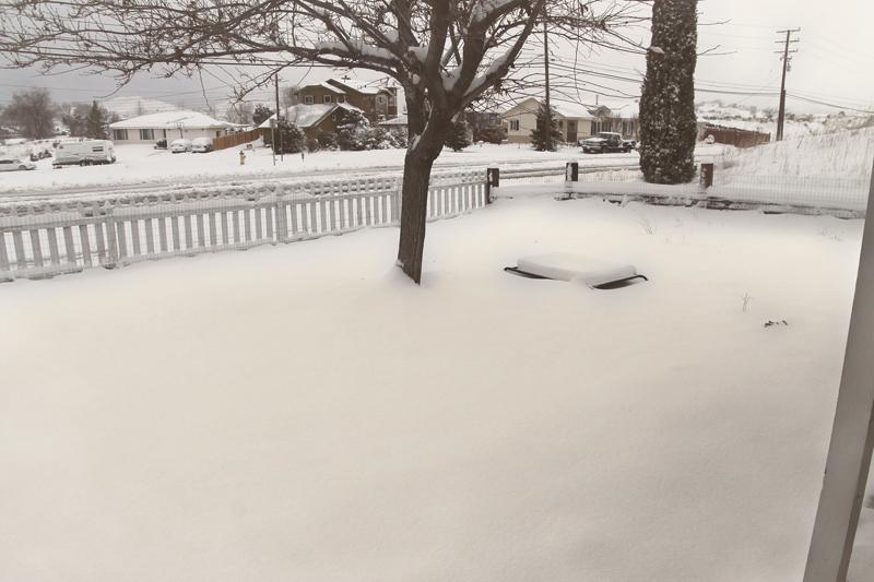 front-yard-snow-tehachapi