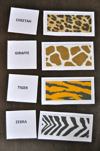 Zoo Animal Texture Cards