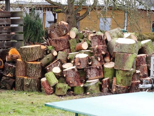 Feuerholz Erle und Fichte