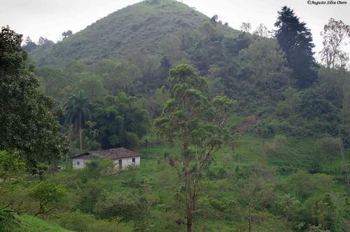 colombia florida ciudad paisaje sitio valledelcauca paisajerural caseteja