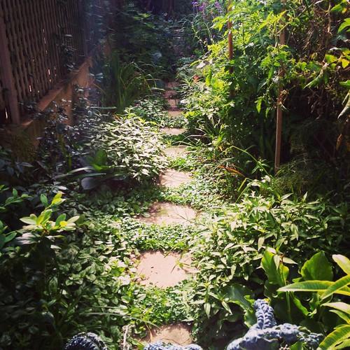 sidegarden