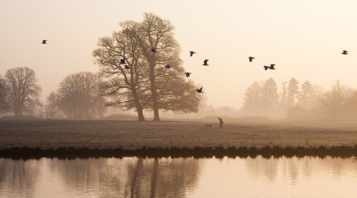sepia sunrise dawn gulls slough berkshire kevday langleypark ooc langleycountrypark