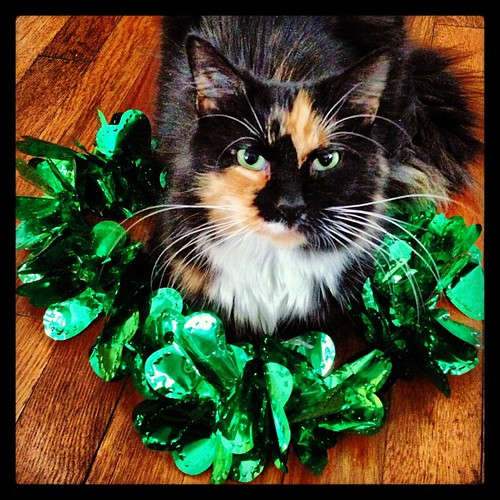 Happy St. Patrick's Day from Grisabella Rossellini!